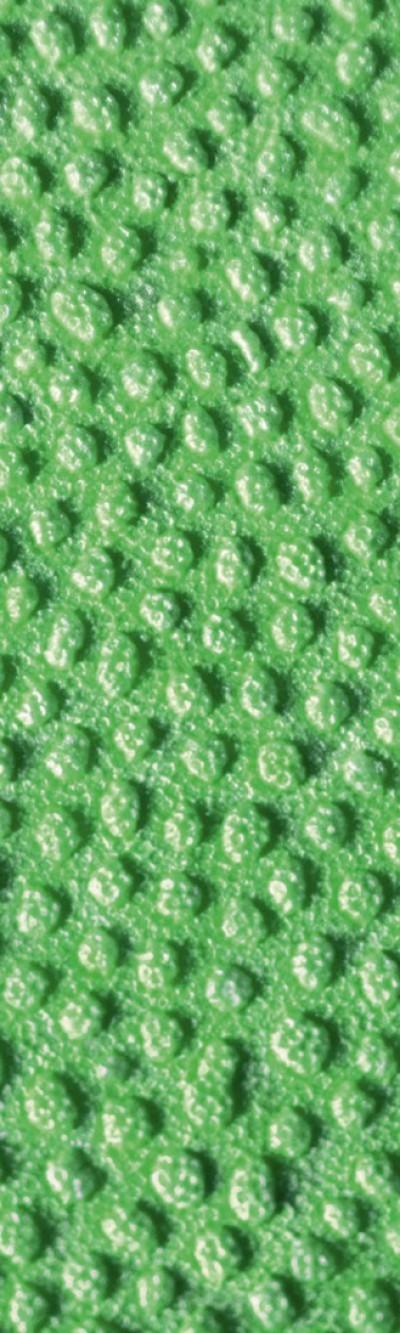 Nahaufnahme von grünem EPP. Das Muster besteht aus eingeprägten, leicht unregelmäßigen Kreisen und Ovalen.